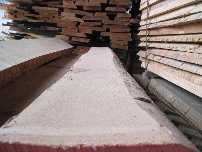 עץ בוק לא גזום לייצור רהיטים