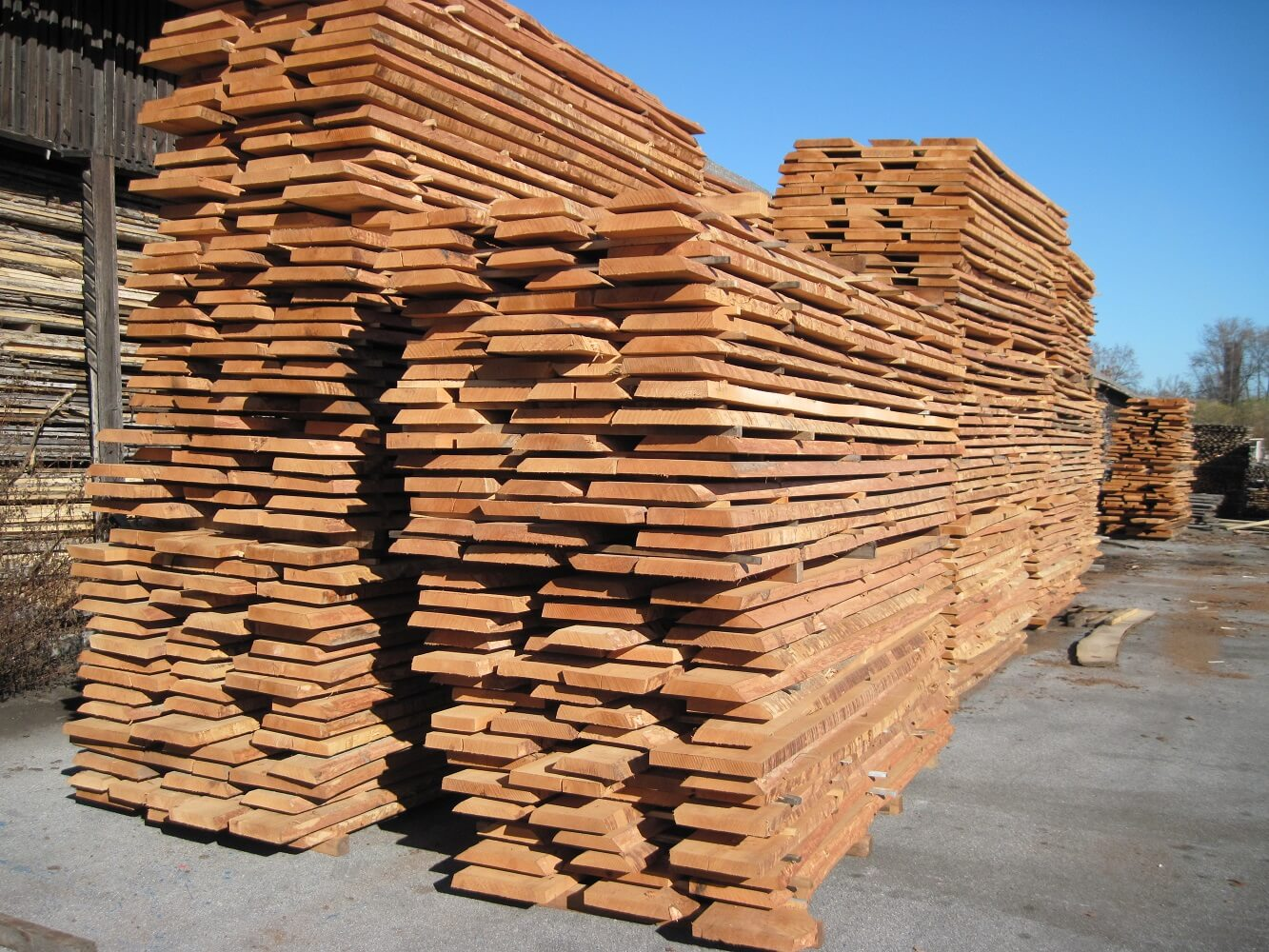 Image via Unedged beech lumber / timber - Mijatovic Ltd wood supplier https://www.mijatovicltd.com/wood-products/unedged-beech-lumber