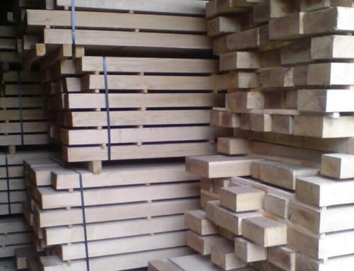 Natural oak: main uses