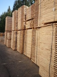 beech wood lumber elements