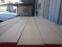 european beech lumber wood supply
