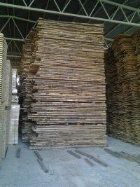 european imported unedged beech lumber