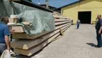 pine lumber beams supply