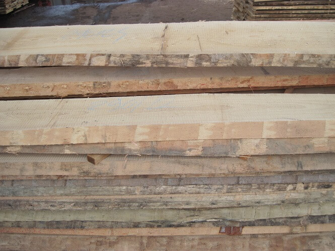 unedged beech lumber export from europe