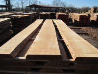 unedged solid beech hardwood