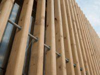 white spruce wood beams