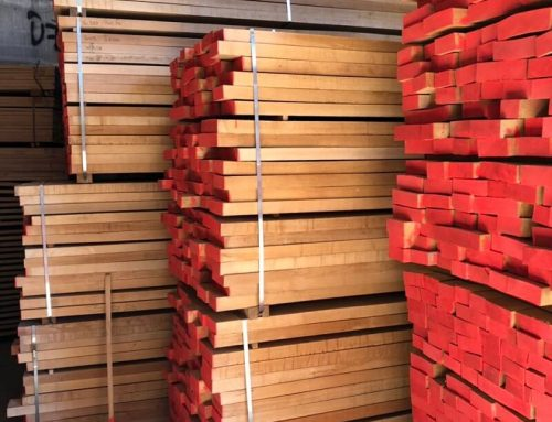 Where to Buy Beech Wood Lumber