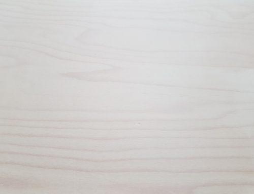 כל מה שאתם צריכים לדעת על עץ בוק בהיר