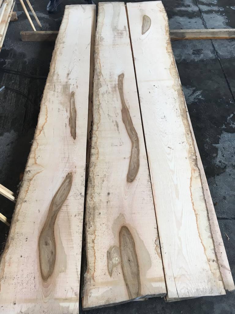 european ash wood