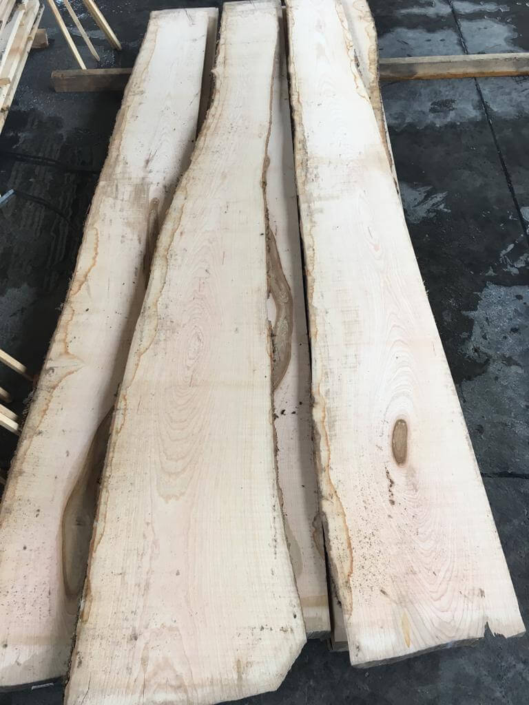 unedged european ash lumber
